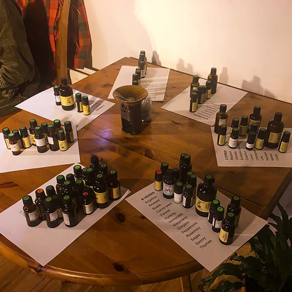 Essential oils arranged in their respective families