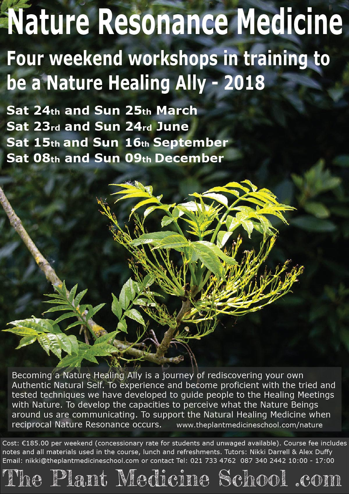 Nature Resonance Medicine Ally Training  2018