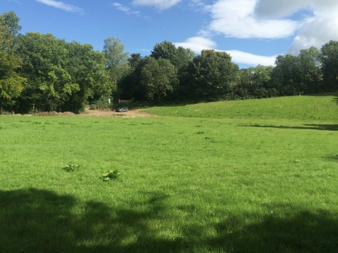 The Community field beside the Hollyfort road Summer 2015